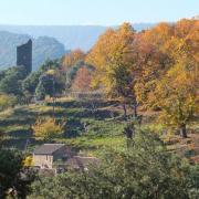Le hameau de La Figère