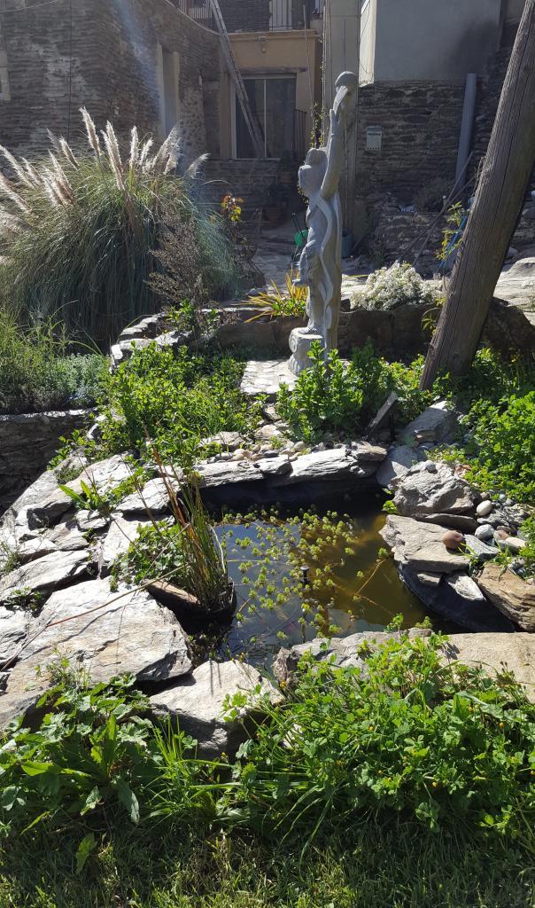 Statue & bassin 1